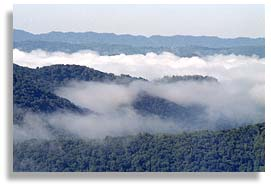 Appalachian mountains and forests