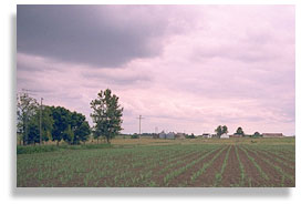 Farmland near Chillicothe, Missouri. Photo by Nic Paget-Clarke.