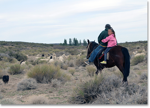 A young girl and (perhaps) her grandmother -- Childcare while herding goats along the traditional paths for moving goat herds as the seasons change.  Close to the foothills of the Andes Mountains, in the Chos Milal department, Neuquén Province, Argentina. Photo by Nic Paget-Clarke.